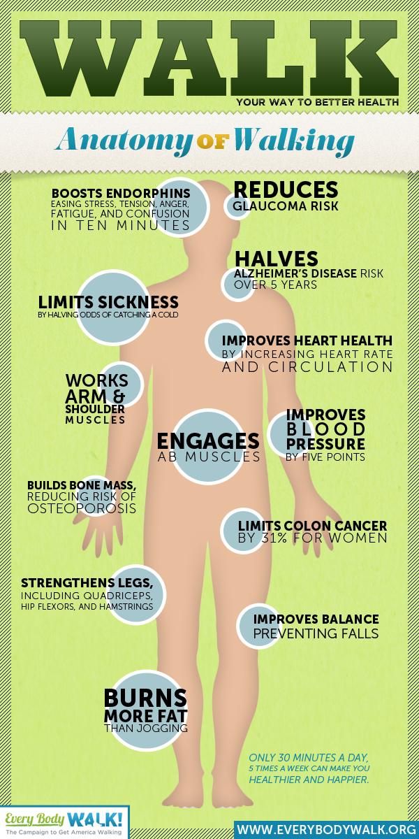 Camminare Fa Bene - Infografica